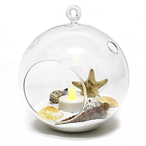 CYS EXCEL Pack of 6 Plant Terrarium Glass Orbs Air Plants Tea Light Candle Holders Succulents Moss Miniature Garden Planters Home Décor-H-9