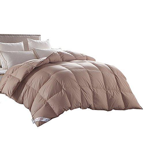 Top Best 5 Comforter Warm Winter For Sale 2017 Product