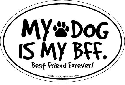 Prismatix Decal Cat and Dog Magnets, My Dog is My BFF