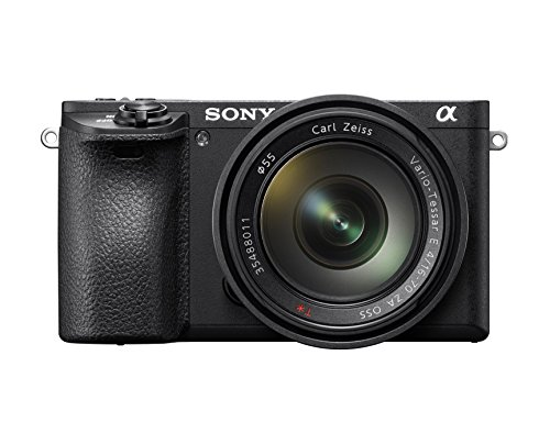 41NouRq0 vL - Sony SEL35F18 35mm f/1.8 Prime Fixed Lens