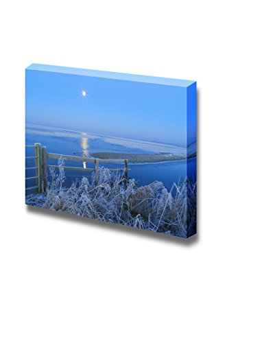 Blue Winter Landscape in Nature with Moon and Field Wall Decor ation