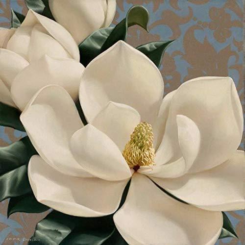 Kit Magnolias - 1