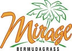 The Dirty Gardener Mirage Bermuda Grass, 25 Pounds
