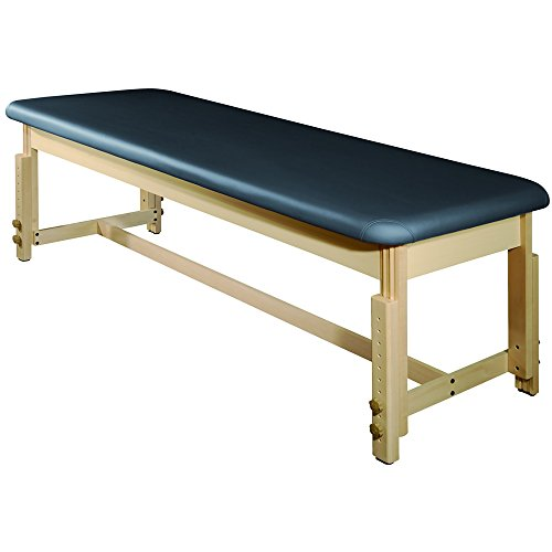 MT Harvey Treatment Stationary Massage Table for Clinic,Massage and Acupuncture(Agate Blue)