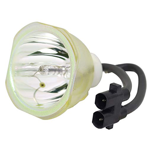 (LYTIO Economy for Plus 28-050 Projector Lamp (Bulb Only))