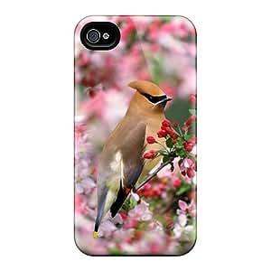 For Iphone 6plus Premium Cases Covers Bird Protective Cases