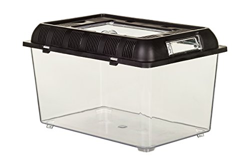 Dragon - PET PLAZA CUBO - Brutbox - Faunarium - Extra Stabile - Kunststoffbox Large- 32,5 x 22 x 20cm