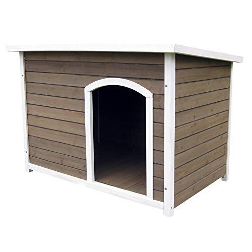 House and Paws Dog House