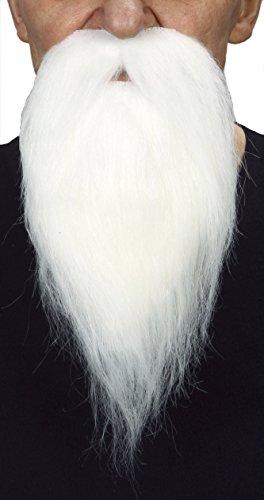Philosopher white fake beard, self (Fake White Beard)