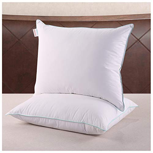 Homelike Moment Feather Down Pillows for Sleeping - 2 Pack Feather Bed Pillow Standard Size Pillows Set of 2 100% Cotton Fabirc 20x26 Inch