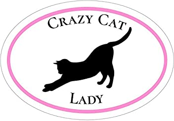 WickedGoodz Pink Cat Paw Meow Vinyl Window Decal Transfer Cat Bumper Sticker Perfect Cat Mom Gift