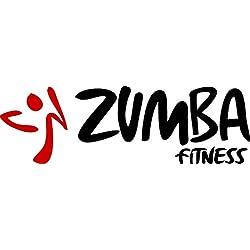 """Zumba Fitness sticker decal 7"""" car, truck, laptop"""