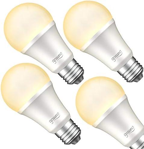 Smart Light Bulb Work