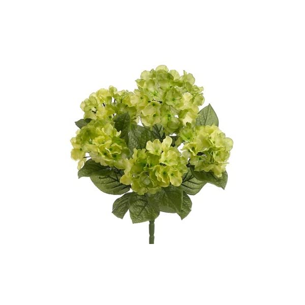 17.5″ Garden Hydrangea Bush x5 Two Tone Green (Pack of 12)