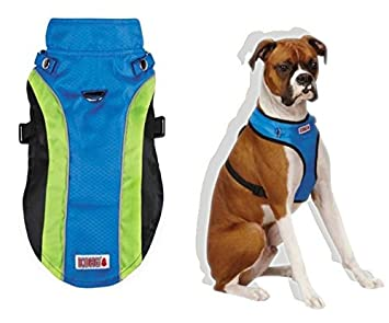 Medium Dog Accessory and Fun Bundle with Kong Halter Harness Coat in