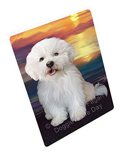 Bichon Frise Dog Portrait - Bichon Frise Dog Art Portrait Print Woven Throw Sherpa Plush Fleece Blanket (50x60 Fleece)