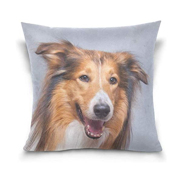 Rough Collie Dog Double-Sided Polyester Square Throw Pillow Case Cushion Cover for Sofa Bedroom Car Decor 20x20 Inch 1