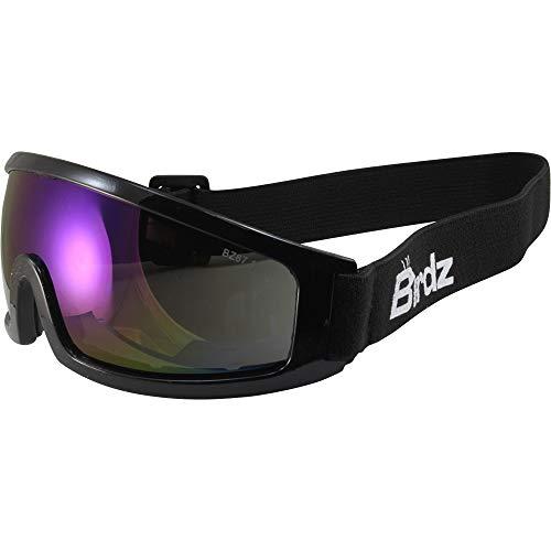 Birdz Robin Sport Skydiving Snowboarding Motorcycle Riding Goggles Blue Mirror Lens