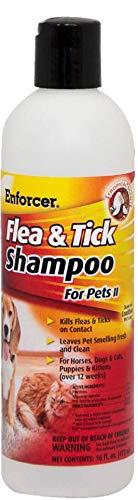 Enforcer Flea and Tick Shampoo, 16-Ounce