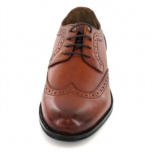 Salamander , Chaussures de ville à lacets pour homme