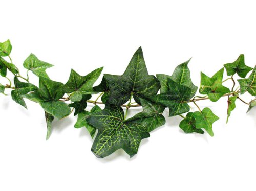 Darice MC-1975 Flocked Ivy Garland, 6-Feet - Poison Ivy Gloves