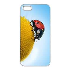 Coccinella septempunctata Hight Quality Plastic Case for Iphone 5s
