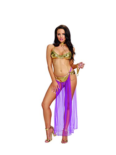 Dreamgirl Womens Harem Slave Set product image