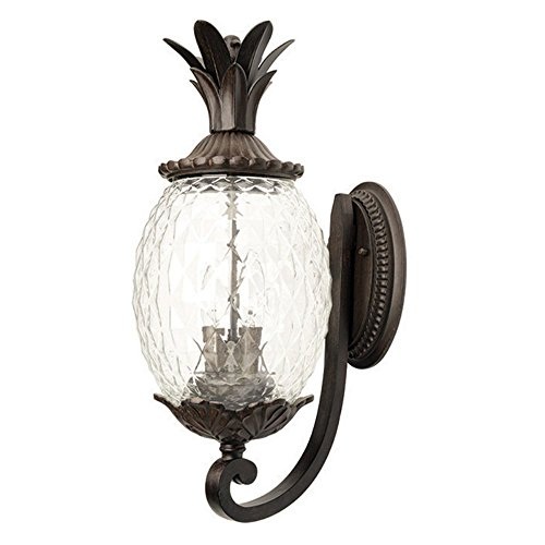 Acclaim-Lighting-Lanai-2-Light-Outdoor-Wall-Mount-Light-Fixture