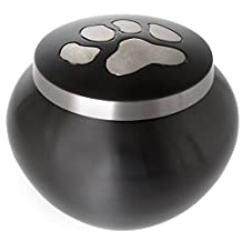 Pet Cremation Brass Pet Urn With Silver Paw Prints, Medium by Memorial Gallery