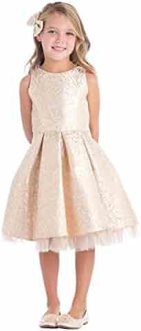 415f106160e Sweet Kids Big Girls Blush Pleated Jacquard Tulle Junior Bridesmaid Dress  7-16