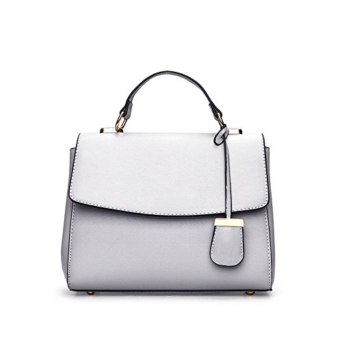 Gwqgz New Handbag Ladies Fashion Bag Shoulder Simple And Easy, Ghouls Gray