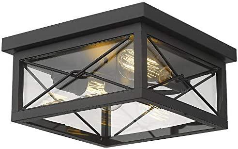 Emliviar 12 Inch Ceiling Light Fixture, 2-Light Flush Mount Ceiling Light in Black Finish, 0387B-CL BK