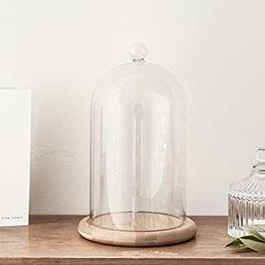 Glass Cloche Bell Jar Display Dome with Bamboo Base - 8  x 4