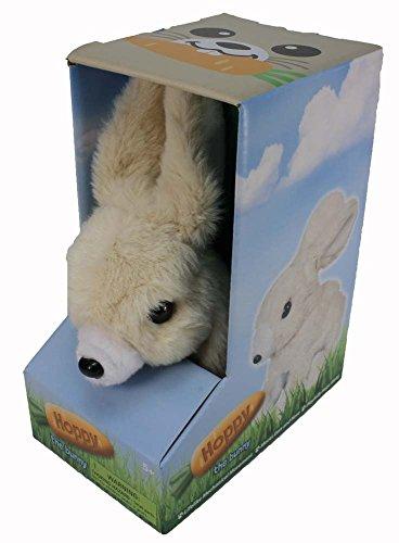 Hoppy Bunny - 1