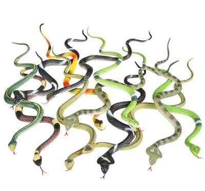 Realistic Rain Forest Snakes 14