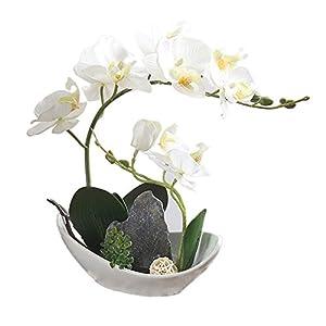 BeautiLife Artificial Flower Lifelike Real Touch Flowers Arrangement Phalaenopsis Bonsai Orchid Home Decoration 3