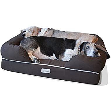 PetFusion Ultimate Dog Bed & Lounge. (Large Brown, 36 x 28 x 9.5 ). Premium Edition w/ Solid 4  Memory Foam.  [Replacement covers also available]
