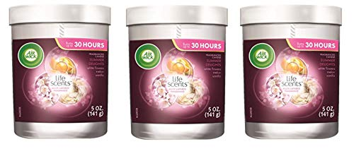 Air Wick Life Scented Candle, Summer Delight - 3 Count x 5 Oz