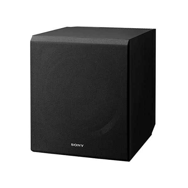 Sony  Channel Speaker