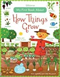 img - for How Things Grow book / textbook / text book