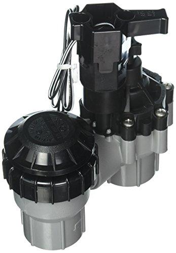 Rain Bird 075-ASVF 3/4'' Inlet Residential Anti-Siphon Sprinkler Valve w/Flow Control by Rain Bird