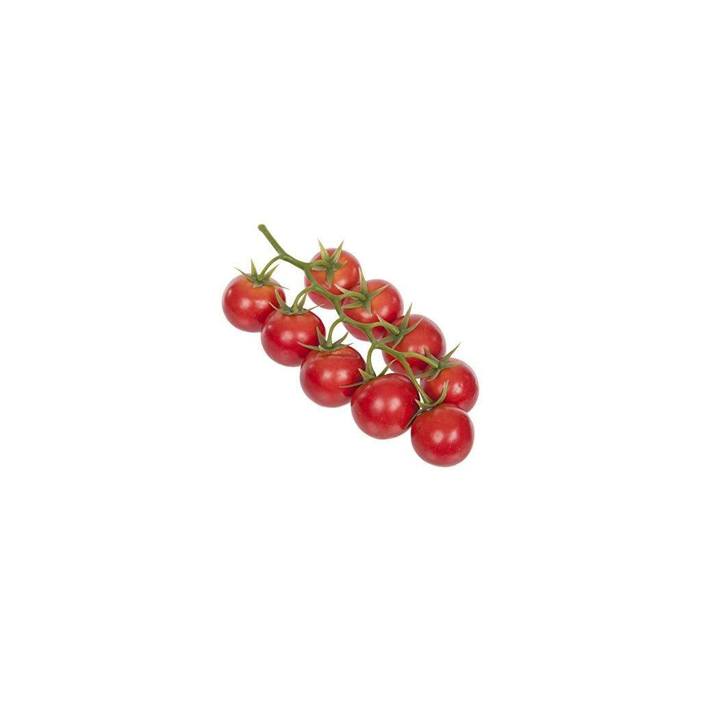 FloristryWarehouse-Artificial-Cherry-Tomato-9-Red-Fruits-on-the-Vine-825-Inches-Mock-Summer-Fruits