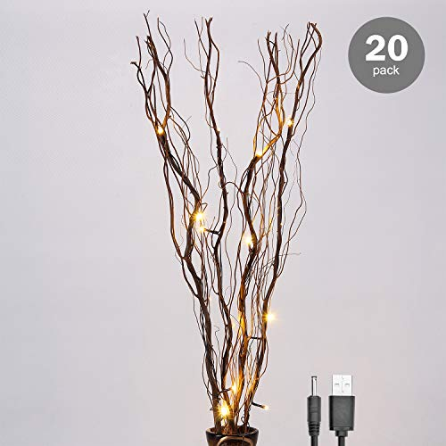 Lighted-Natural-Branch