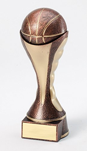 Etch Workz Customize Resin Design Championship Worthy Award - Soccer Sport Themed Sculptures Trophy - Engraved Gold Plated - Personalized Free (10-1/4
