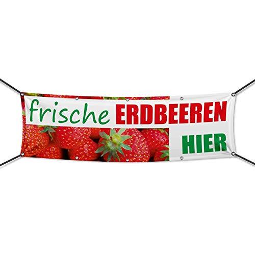 300 x 100 cm Werbeschild Werbebanner Frische Erdbeeren Banner Obst /& Gem/üse Plane