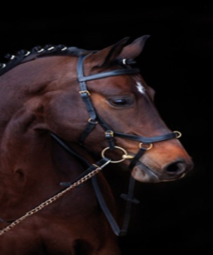 Rambo Micklem Competition Bridle Horseware Ireland