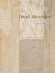 Dead Meander: Essays