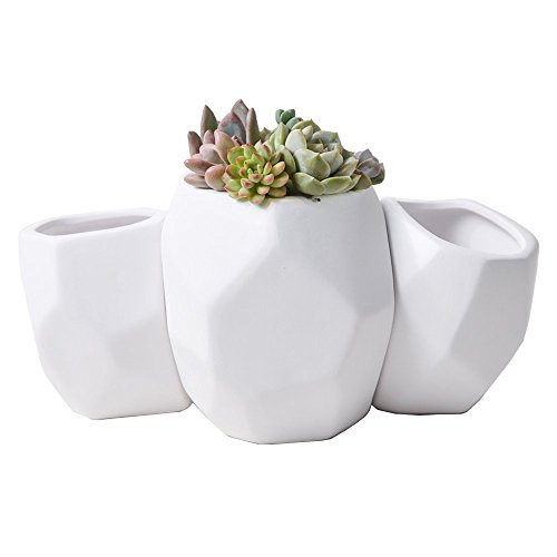 Light Up Outdoor Plant Pots