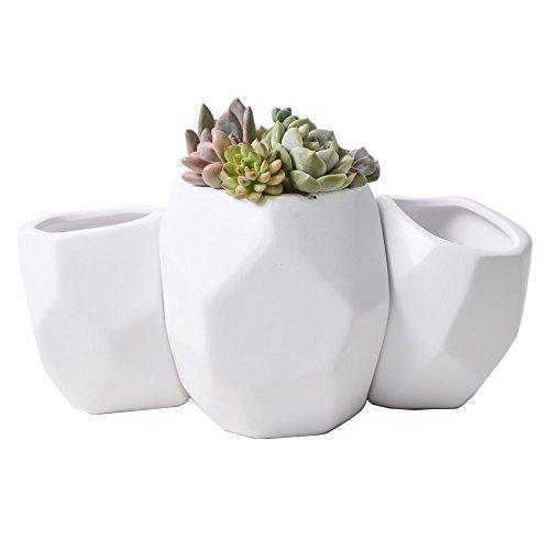 Light Up Outdoor Plant Pots