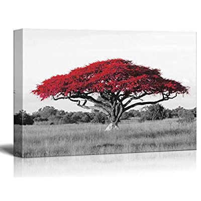 Top Quality Design, Delightful Style, Pop of Red Color Acacia Treetop on Black and White African Savanna Background
